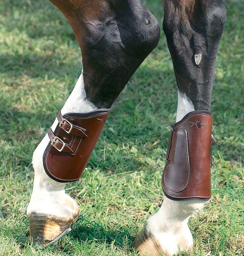 selleria-equipe-equitazione-protezioni-cavallo-pn01