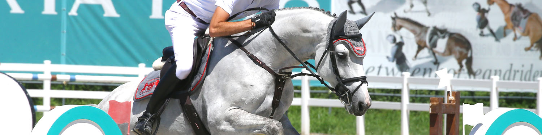 selleria_equipe_header-testiere-equitazione